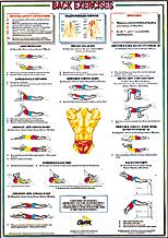 Back Exercises (Floor) Chart